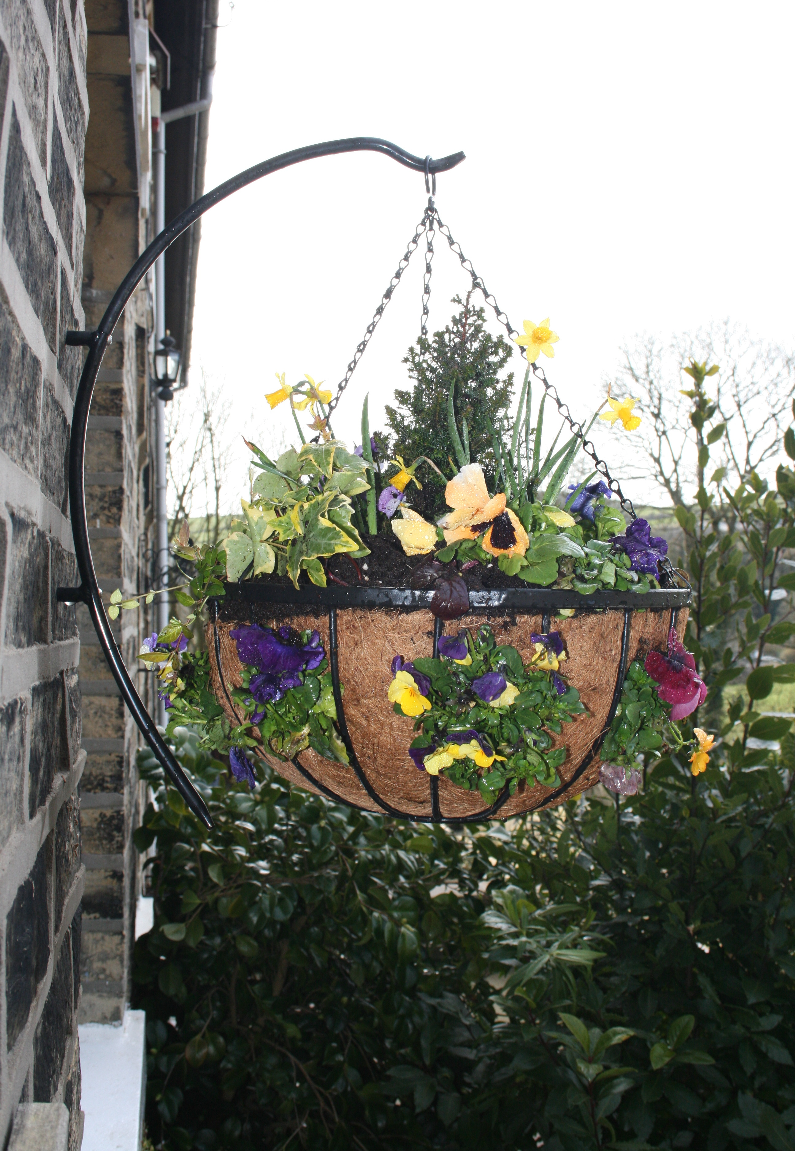 How to plant hanging baskets garden features ideas for Hanging garden designs