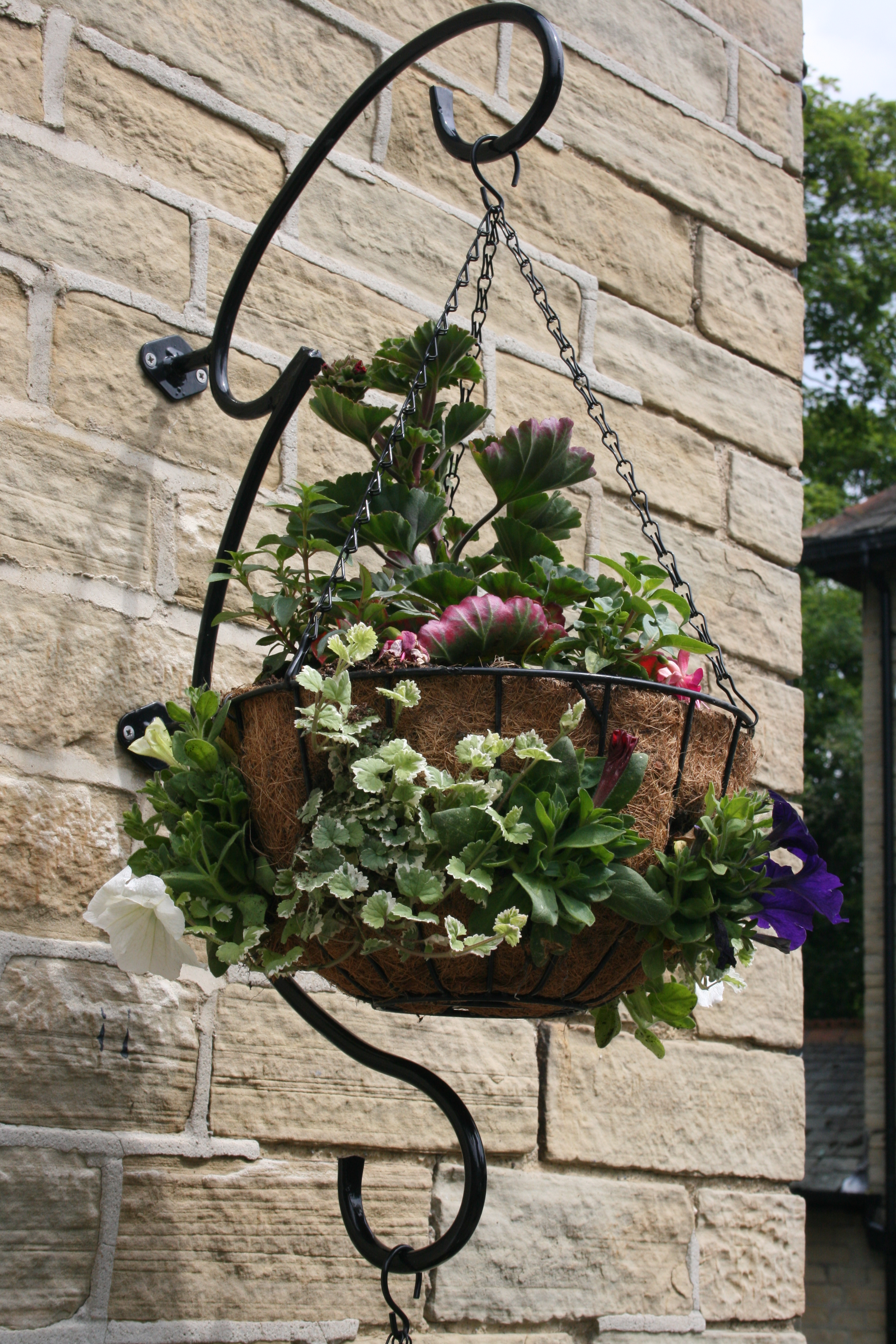how to plant hanging baskets garden features ideas. Black Bedroom Furniture Sets. Home Design Ideas