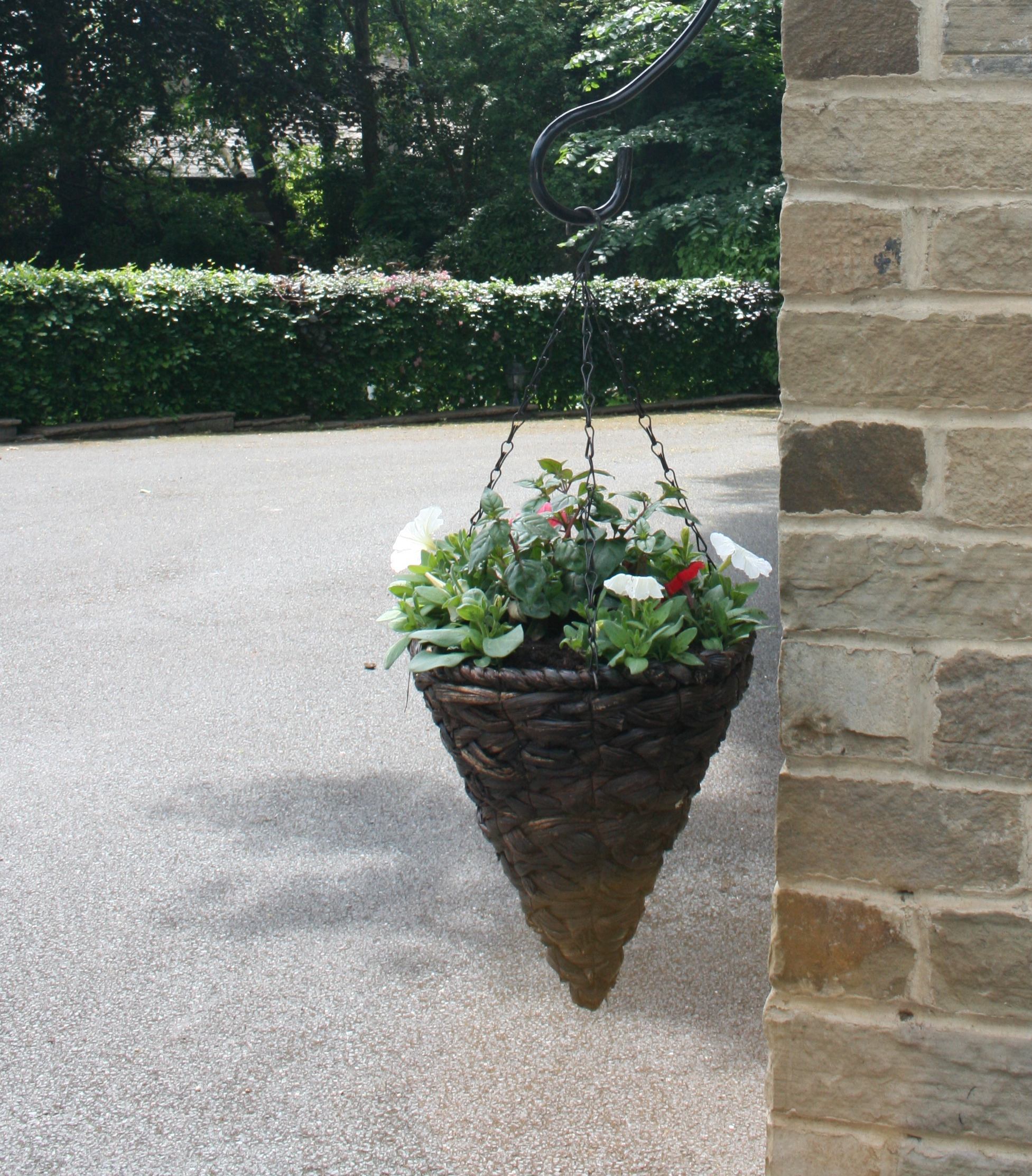 how to plant hanging baskets garden features ideas